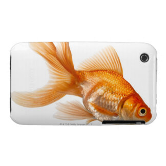 Fancy Goldfish iPhone 3 Covers