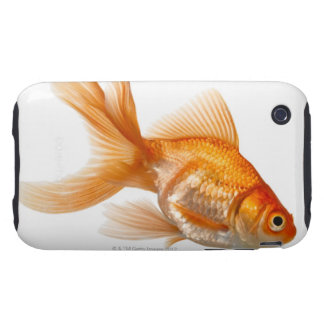 Fancy Goldfish iPhone 3 Tough Cover