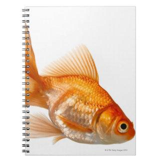Fancy Goldfish Spiral Notebook