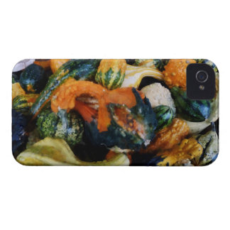 Fancy Gourds Case-Mate iPhone 4 Cases