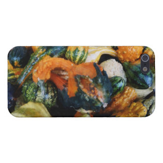 Fancy Gourds Cover For iPhone 5/5S