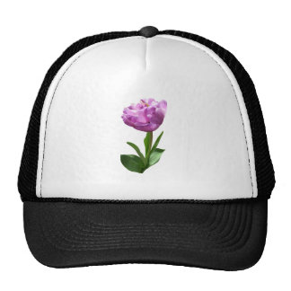 Fancy Pink Tulip Mesh Hats