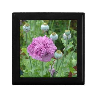 Fancy purple poppy flowers gift boxes