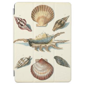 Fancy Shell Beach iPad Air Cover