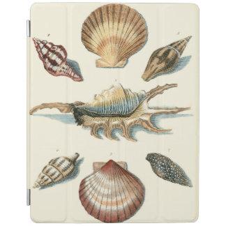 Fancy Shell Beach iPad Cover