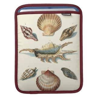 Fancy Shell Beach iPad Sleeve