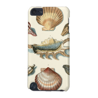 Fancy Shell Beach iPod Touch (5th Generation) Cases