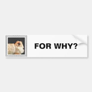 Fangsy bumper sticker #2