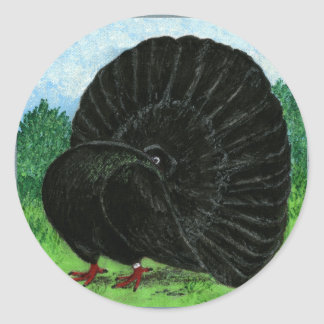 Fantail:  Black Stickers