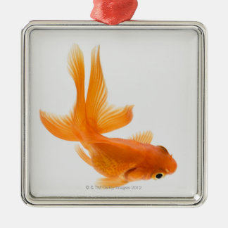 Fantail goldfish (Carassius auratus) 2 Christmas Ornament