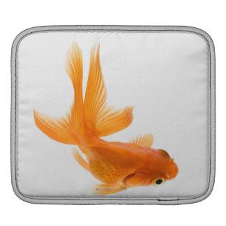 Fantail goldfish (Carassius auratus) 2 iPad Sleeve