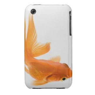 Fantail goldfish (Carassius auratus) 2 iPhone 3 Case-Mate Cases