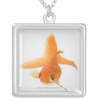 Fantail goldfish (Carassius auratus) Jewelry