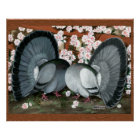 Fantail Pigeons Matched Pair Poster