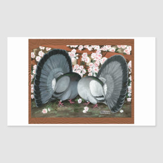 Fantail Pigeons Matched Pair Rectangular Sticker