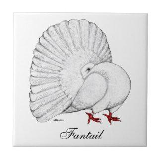 Fantail White Ceramic Tile