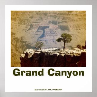 Fantastic Grand Canyon Poster