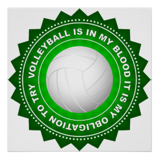 Fantastic Volleyball Shield 2 Poster