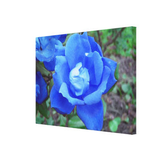 Fantasy Blue Rose Stretched Canvas Wall Decor Canvas Print