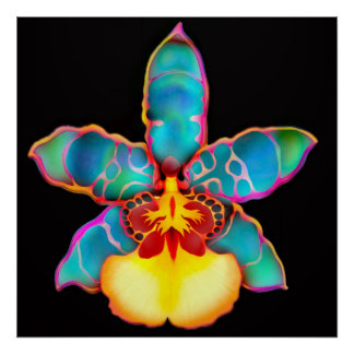 Fantasy Colored Orchid Flower Poster