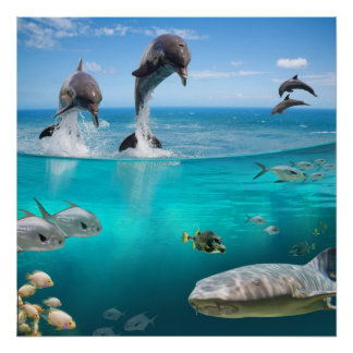 Fantasy Dolphins Jumping Poster
