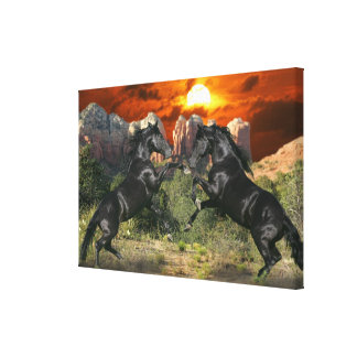 Fantasy Horses: Black Magic Canvas Print