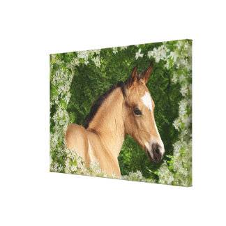 Fantasy Horses: Flowers Canvas Print