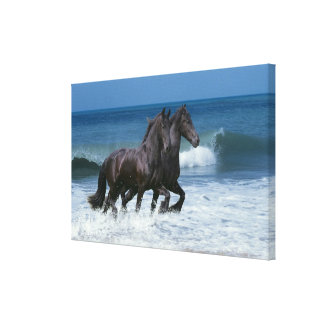 Fantasy Horses: Friesians & Sea Canvas Print