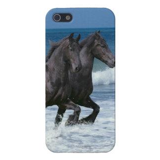 Fantasy Horses: Friesians & Sea iPhone 5 Case