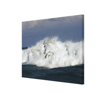 Fantasy Horses: Sea Canvas Print