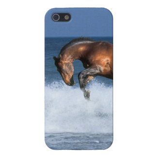 Fantasy Horses: Selle Francais & Sea Case For The iPhone 5