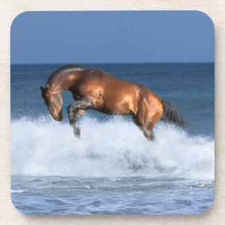 Fantasy Horses: Selle Francais & Sea Coaster