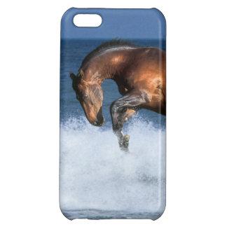 Fantasy Horses: Selle Francais & Sea iPhone 5C Covers