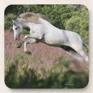 Fantasy Horses: Spring Gallop Drink Coaster