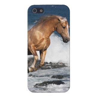 Fantasy Horses: Summer Splash iPhone 5/5S Cases