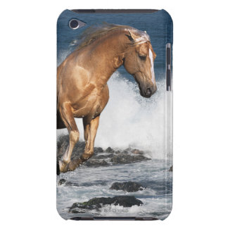 Fantasy Horses: Summer Splash iPod Touch Covers
