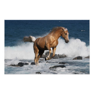 Fantasy horse art posters framed artwork zazzle fantasy horses summer splash poster voltagebd Images