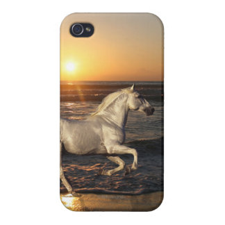 Fantasy Horses: Sunset iPhone 4 Cases