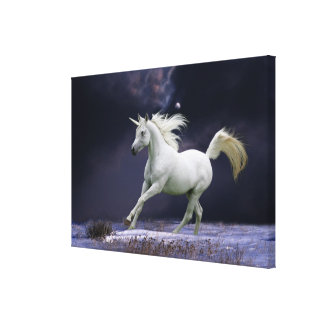 Fantasy Horses: Unicorn Canvas Print