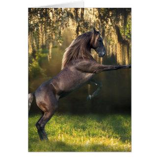 Fantasy Horses: Warrior Prince Greeting Card