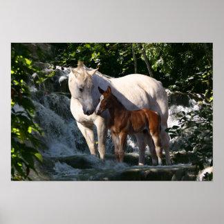 Fantasy Horses: Waterfall Poster
