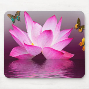 Lotus Flower And Butterfly Gifts Gift Ideas Zazzle Uk