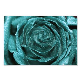 Fantasy Teal Rose Photograph