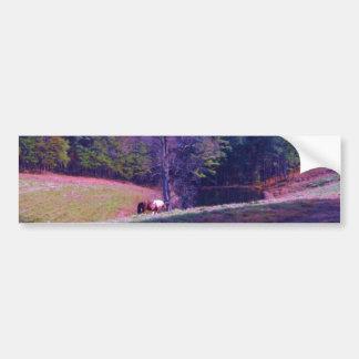 Far Away Horse in a Purple Field Bumper Sticker