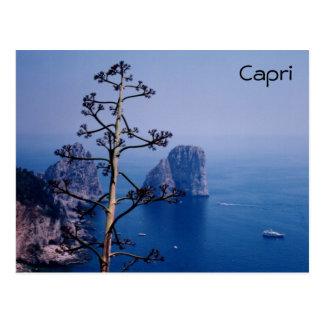 Faraglioni Post Card