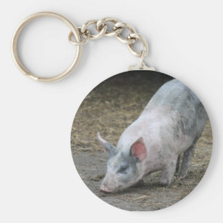 Farm Animal Pig Keychains