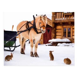 Farm animal talk horse and rabbits postcard