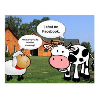 Farm animals cute cartoon funny facebook chat postcard