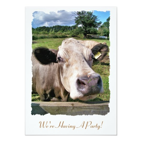 FARM ANIMALS, CUTE COW CARD