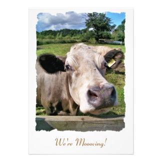 FARM ANIMALS CUTE COW PERSONALIZED INVITATIONS
